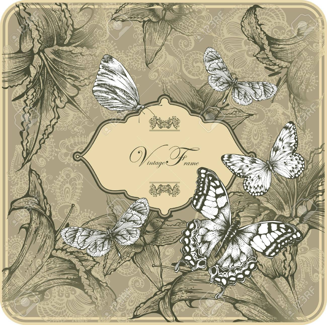 Vintage template with butterflies and blooming lilies. Stock Vector - 12324563