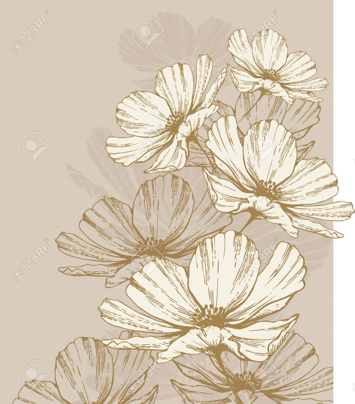 Background with blooming flowers. Stock Vector - 12816669