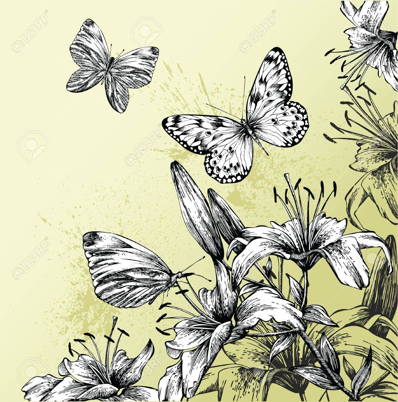 Background with blooming lilies and beautiful butterflies Stock Vector - 12816784