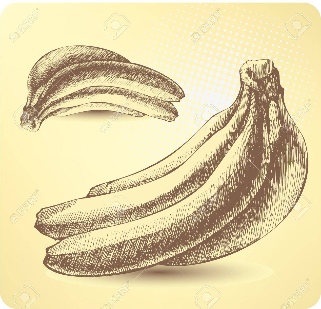 Bunch Of Ripe Bananas Hand Drawing Stock Vector