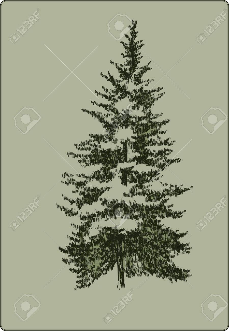 Vintage Christmas Tree Hand Drawing Vector Illustration Royalty Free Cliparts Vectors And Stock Illustration Image 37245361