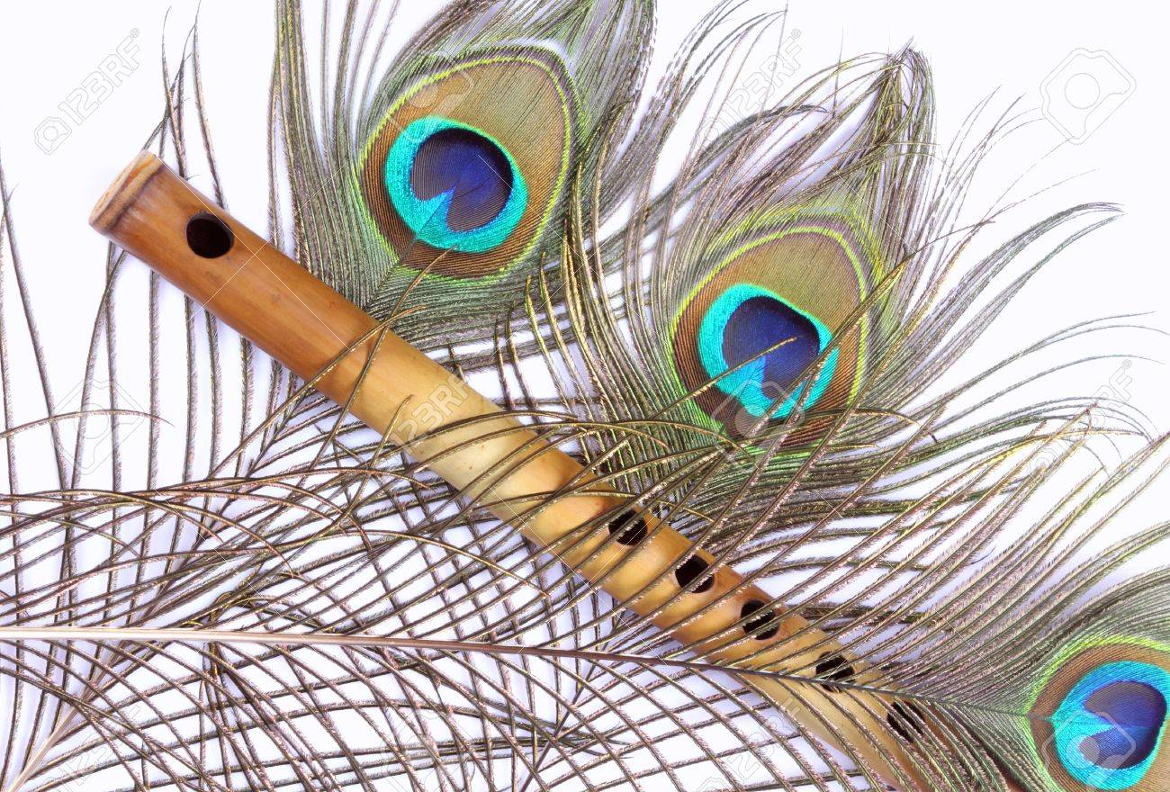 indian flute with peacock feather stock photo picture and royalty