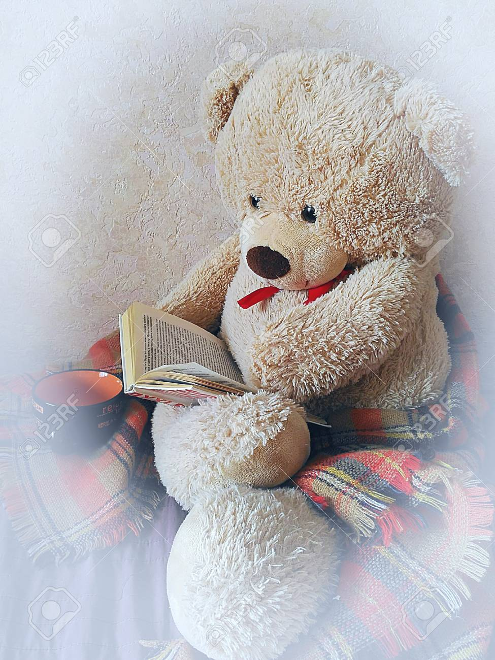 Teddy Bear Reading A Book Home Furnishings Stock Photo Picture And Royalty Free Image Image 73598806