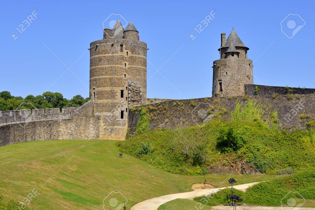 しだ類、城、フランス北西部、ブ...