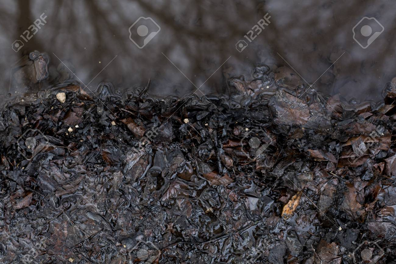 Beautiful top view of autumn damp mud ground puddle background Stock Photo - 94498066