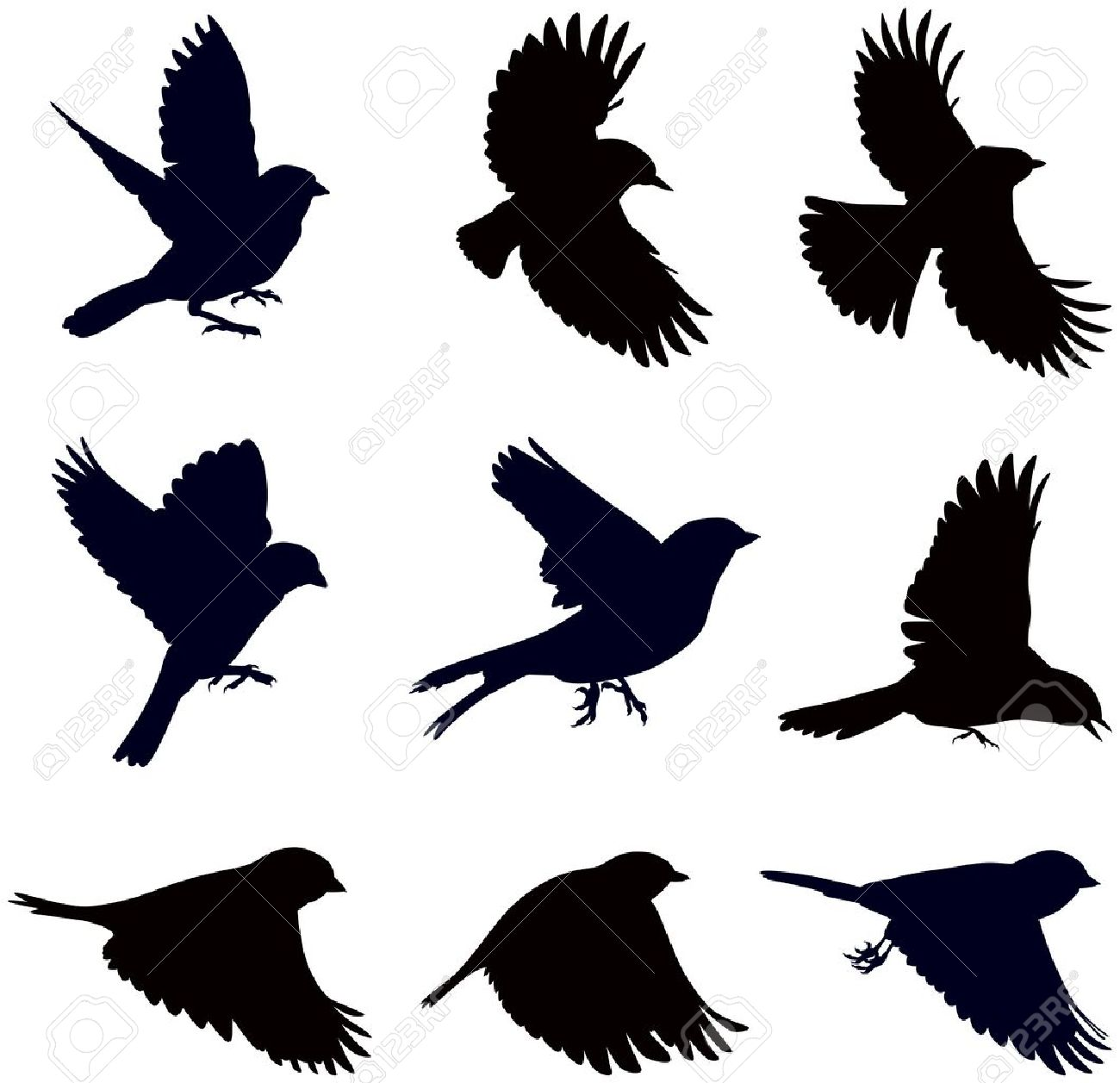 Sparrow Silhouette Flying silhouettes of birds  sparrows