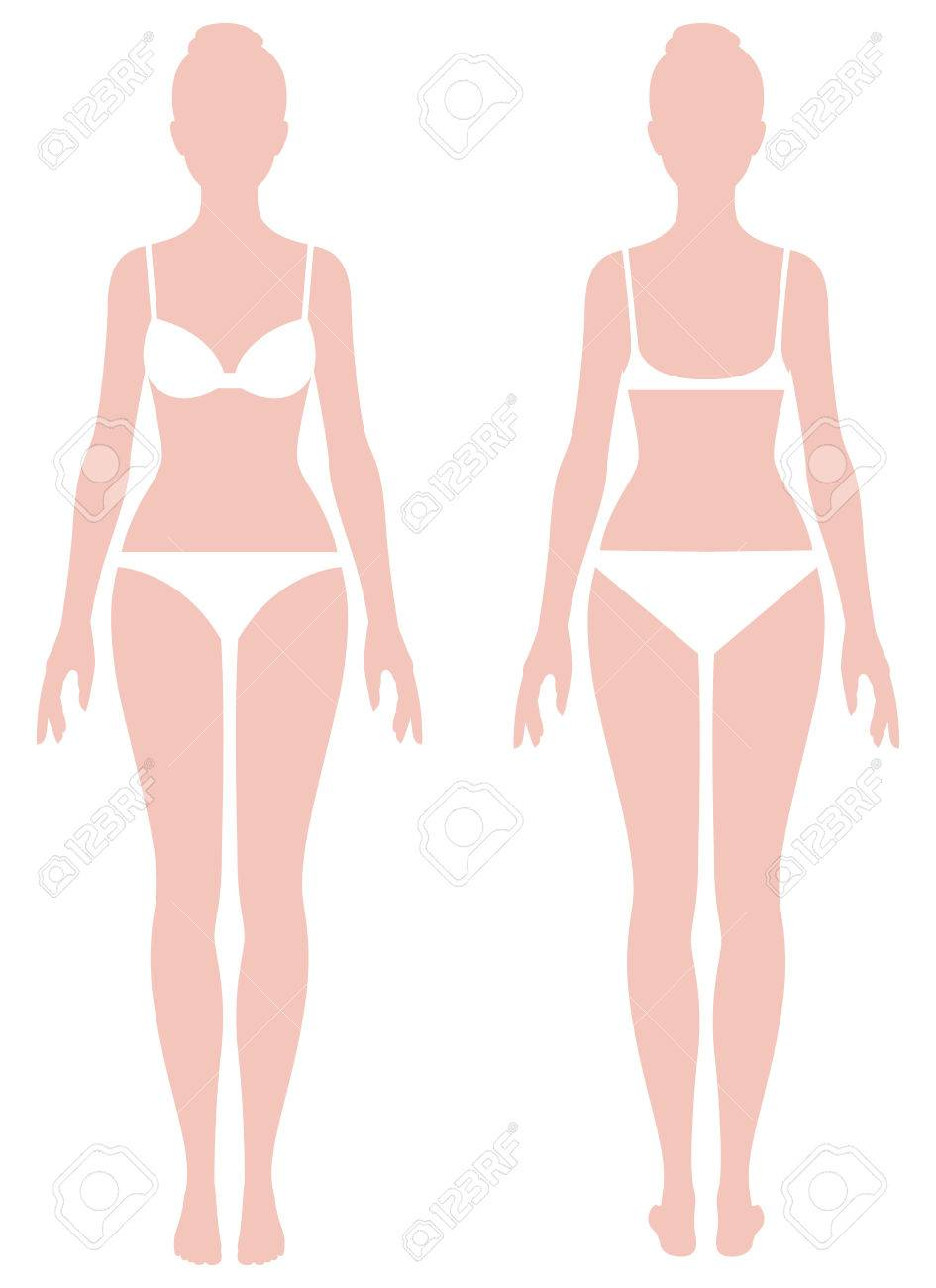 Female body in full length measurement parameters for clothes Stock vector illustration - 64300206