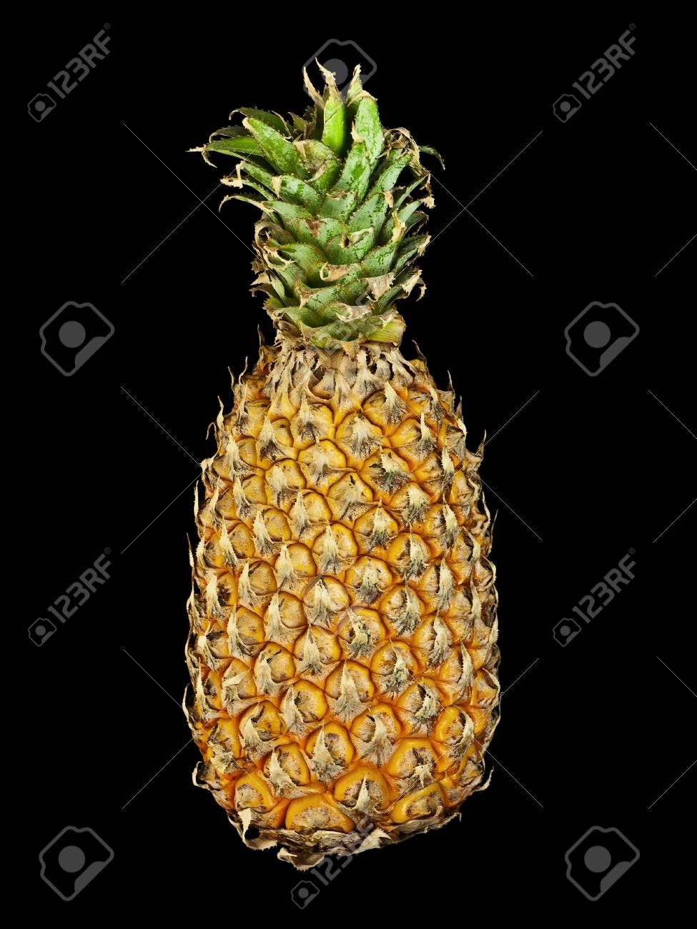Pineapple Stock Photo - 9007356
