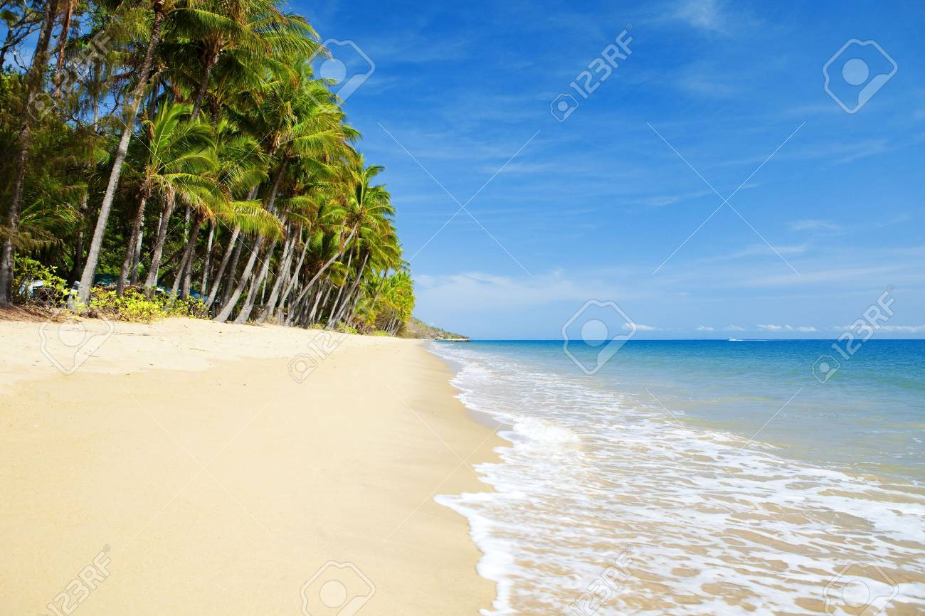 Deserted tropical beach with palm trees in north Queensland Stock Photo - 5990706