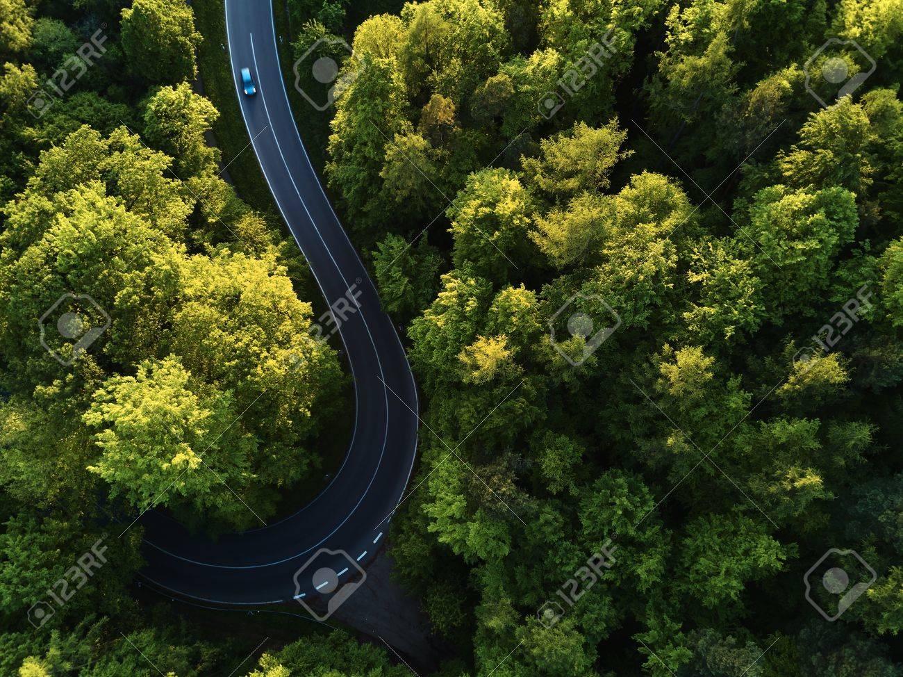 Straße zwischen großen Bäumen von oben mit Drone Luftbild, Landschaft Standard-Bild - 78282128