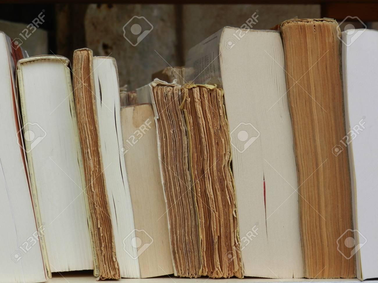 Reading  - book shelf library Stock Photo - 10526789