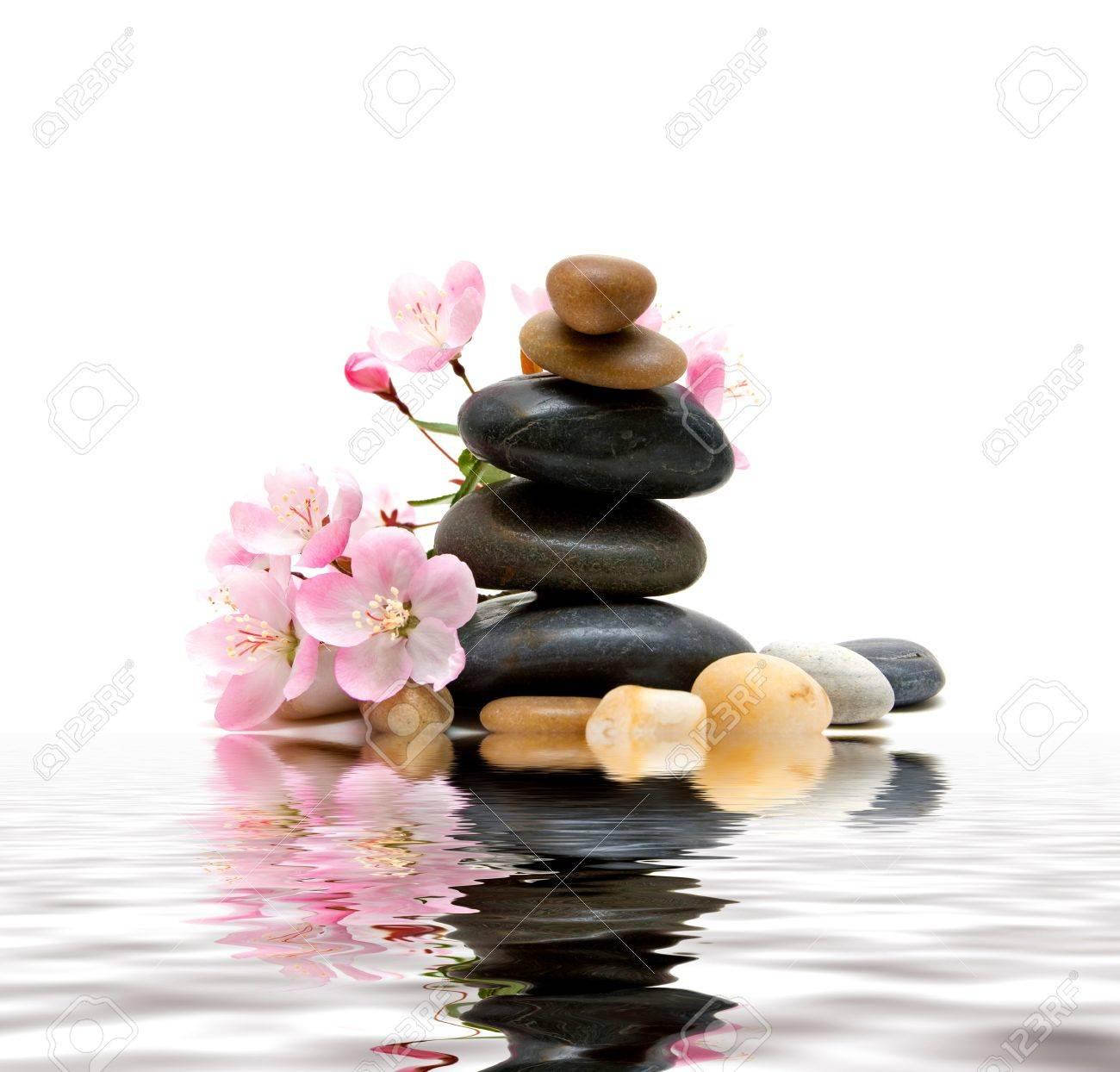 Banque dimages , Zen Spa pierres avec des fleurs
