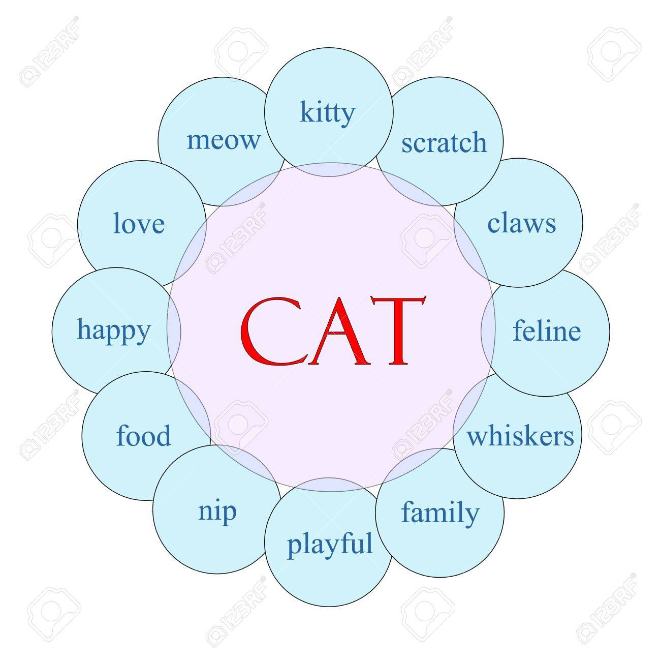 Cat concept circular diagram in pink and blue with great terms such as meow, kitty, scratch and more. Stock Photo - 17996215