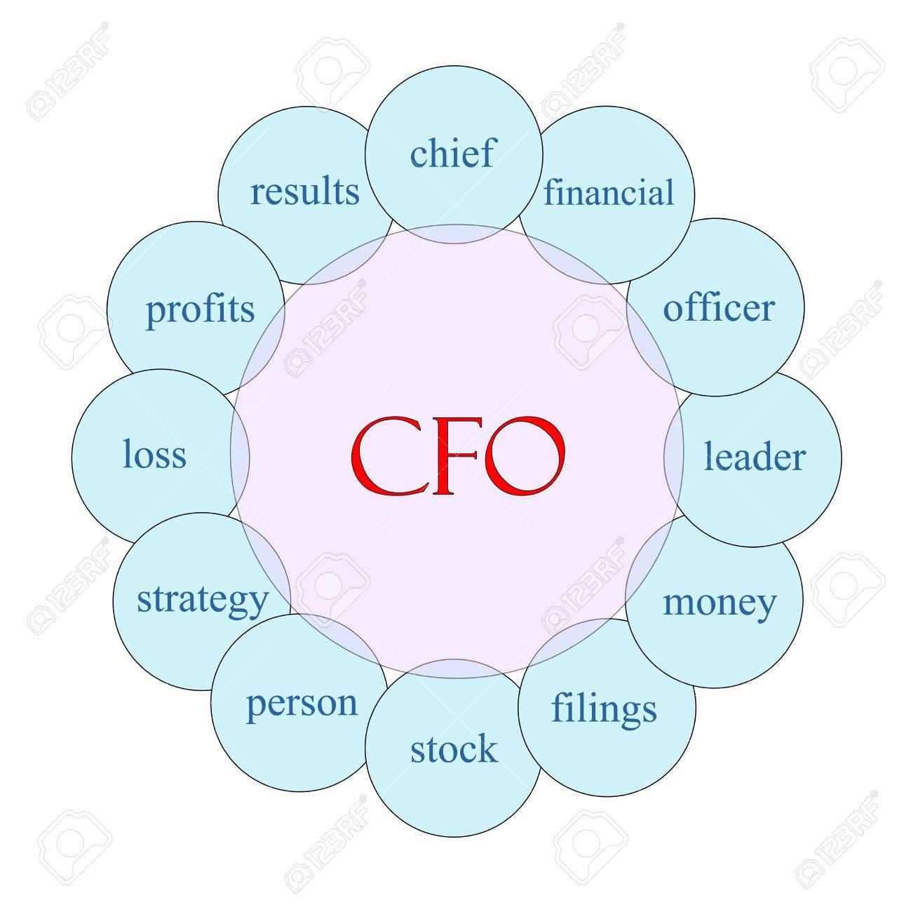 Diagrama CFO Concepto Circular De Color Rosa Y Azul Con Términos De ...