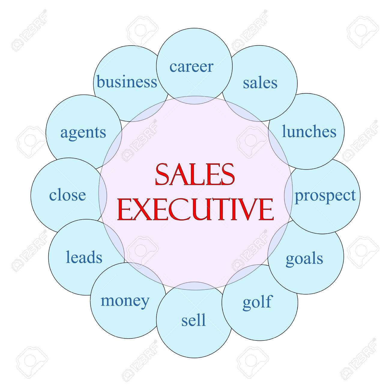 s executive concept circular diagram in pink and blue s executive concept circular diagram in pink and blue great terms such as career