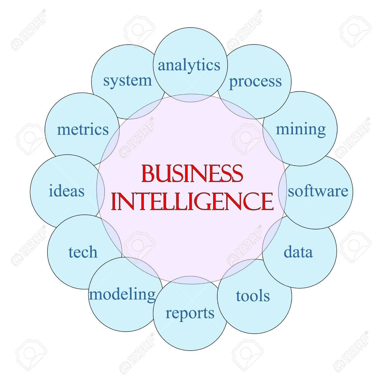 Business Intelligence Concept Circular Diagram In Pink And Blue ...