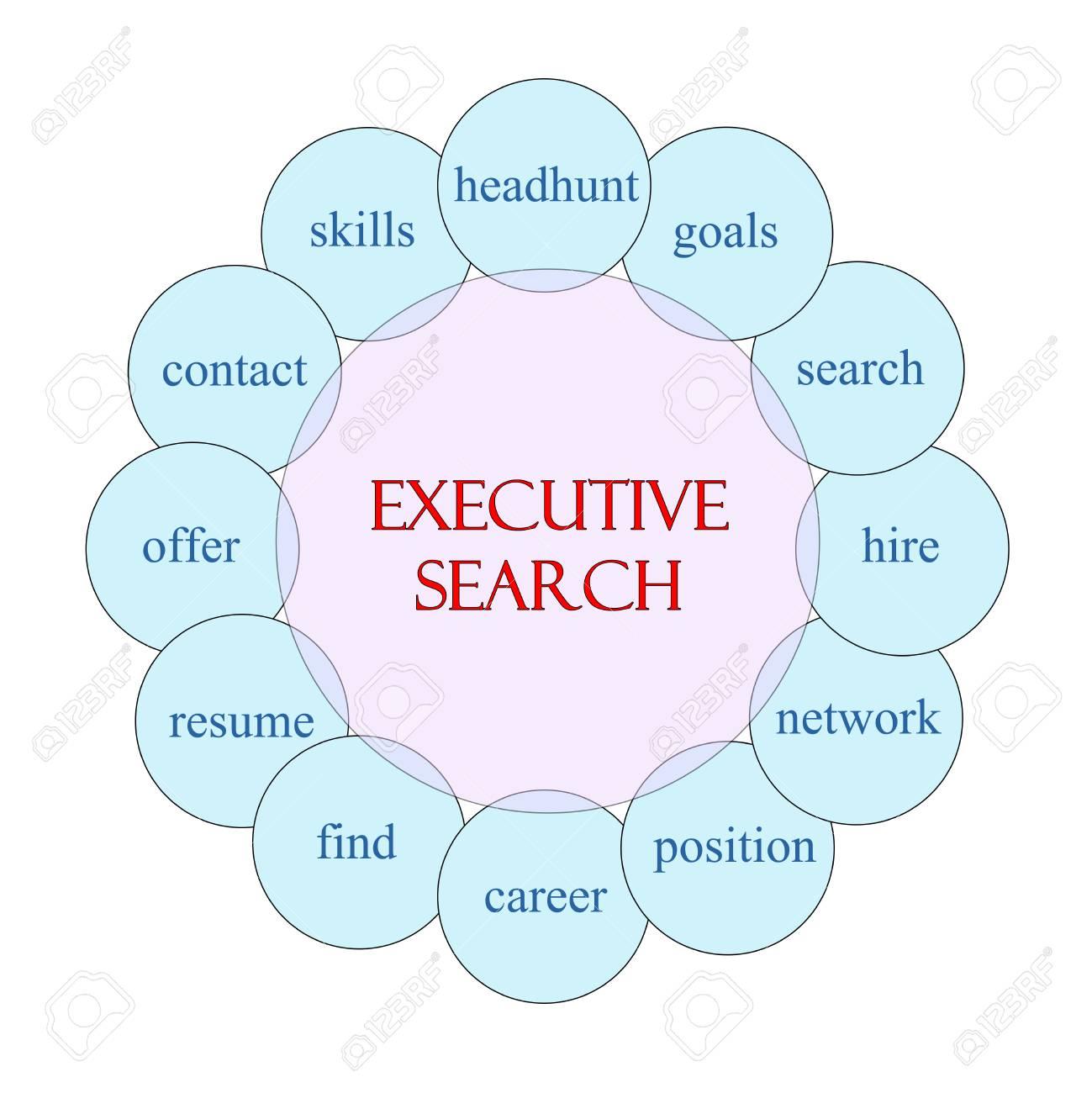 Executive Search-Konzept Kreisförmigen Diagramm In Rosa Und Blau Mit ...