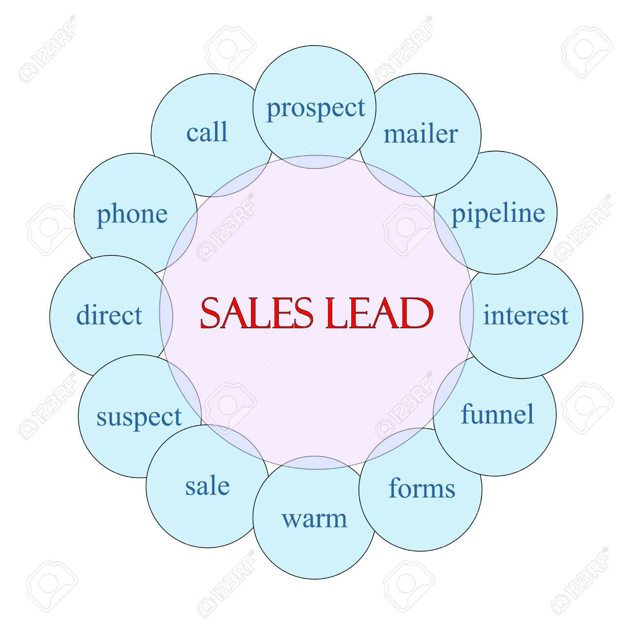 Sales Lead Concept Circular Diagram In Pink And Blue With Great ...