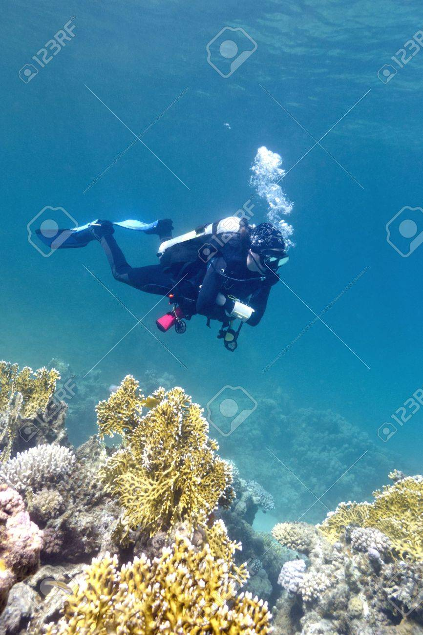 girl diver under coral reef in red sea Stock Photo - 14961783