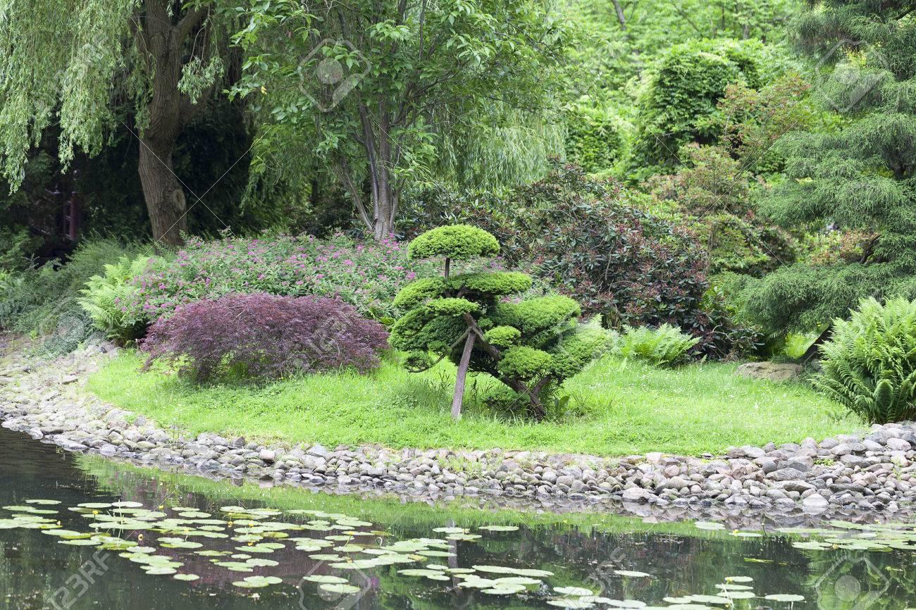 Japanischer Garten, Exotische Pflanzen, Bonsai; Wroclaw, Polen. Der ...