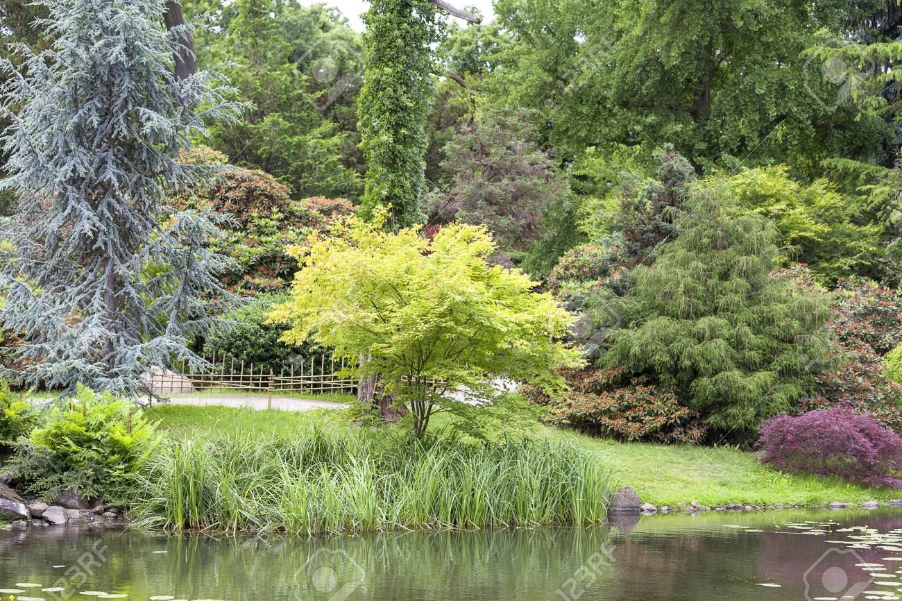 Japanischer Garten Exotische Pflanzen Wroclaw Polen Der
