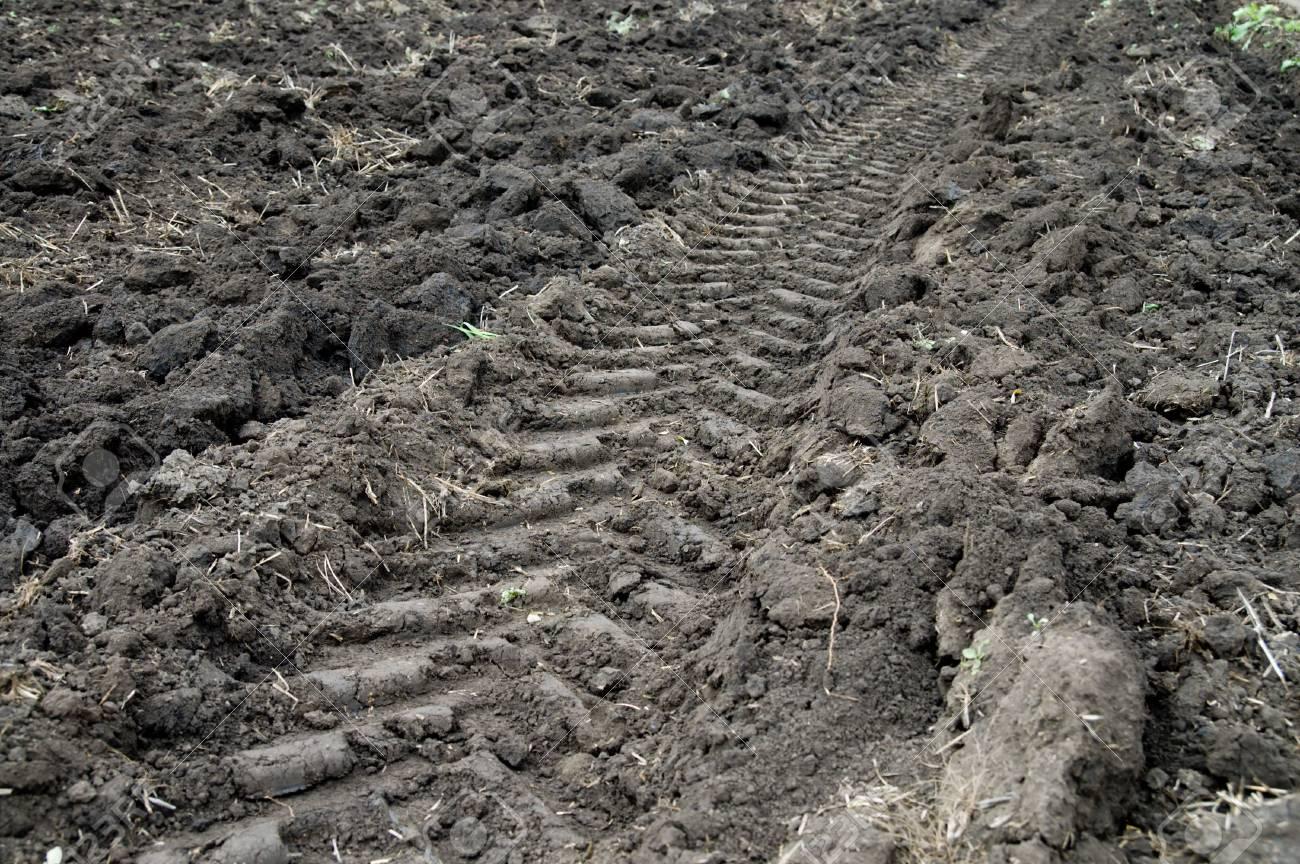 new tractor trace closeup Stock Photo - 3815617