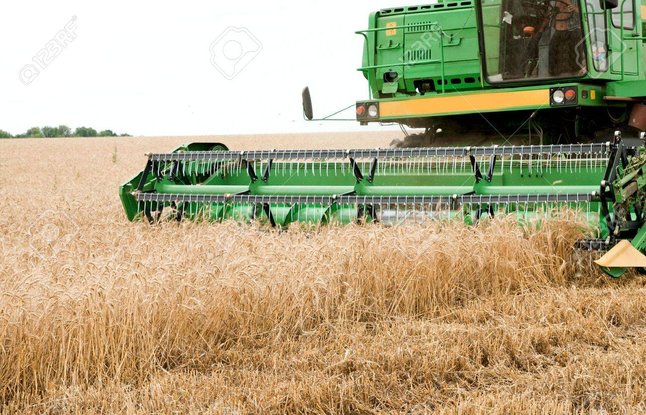 combine harvester working a wheat field Stock Photo - 6139048