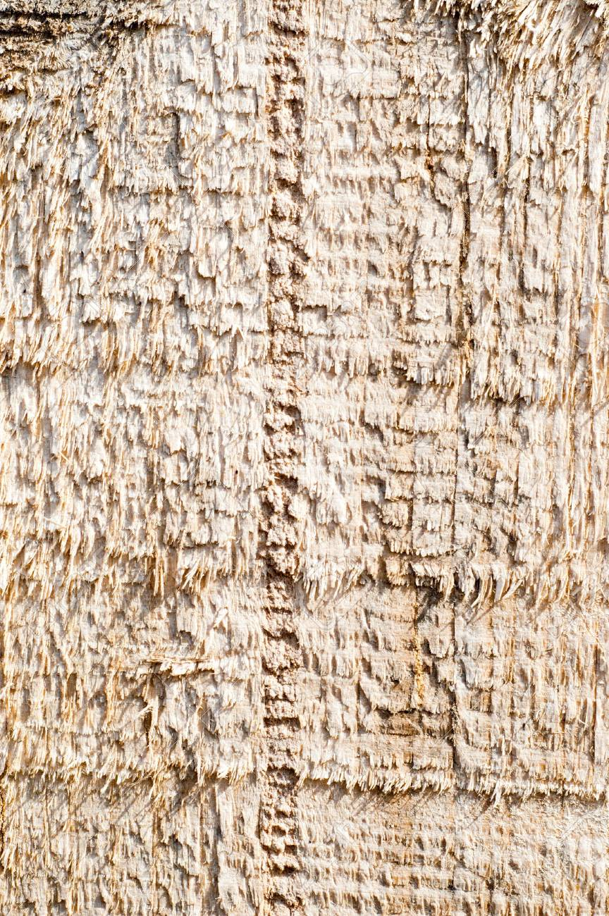 textured surface of board with a rough surface Stock Photo - 6818053