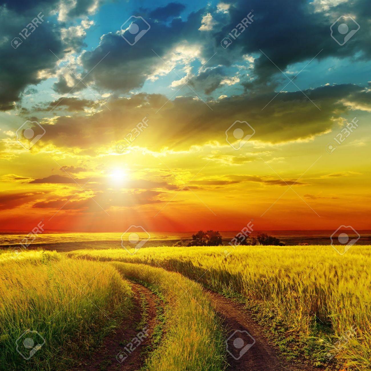 sunset over rural road near green field - 18006159