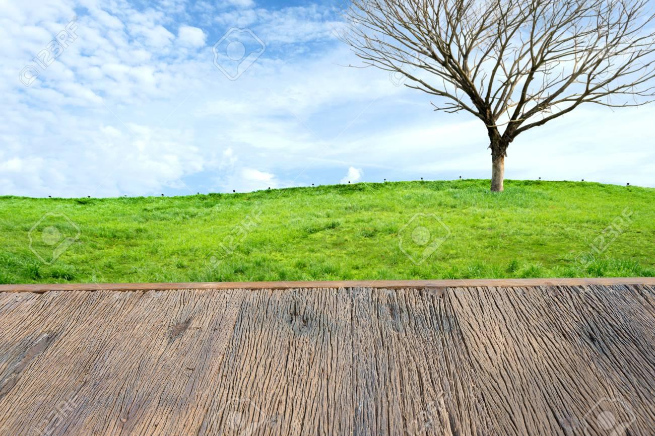 Terraza De Madera Y árbol De La Muerte En Un Campo