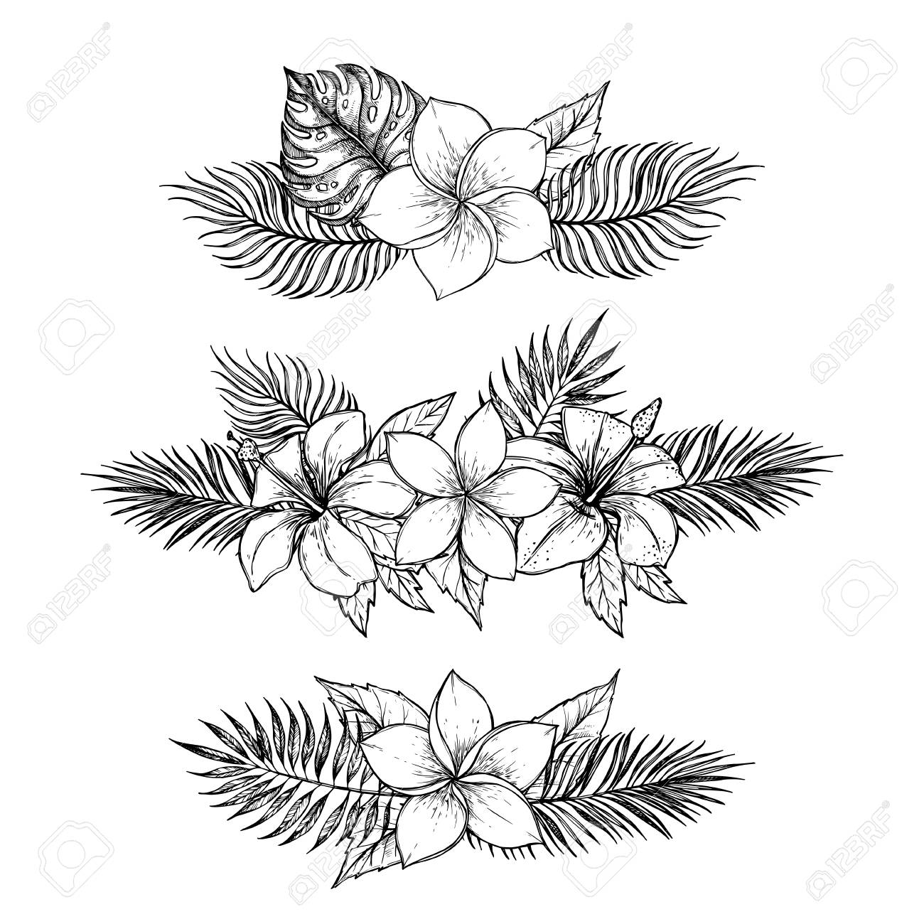 Hand Drawn Vector Illustrations Bouquets Of Tropical Flowers Royalty Free Cliparts Vectors And Stock Illustration Image 78565621