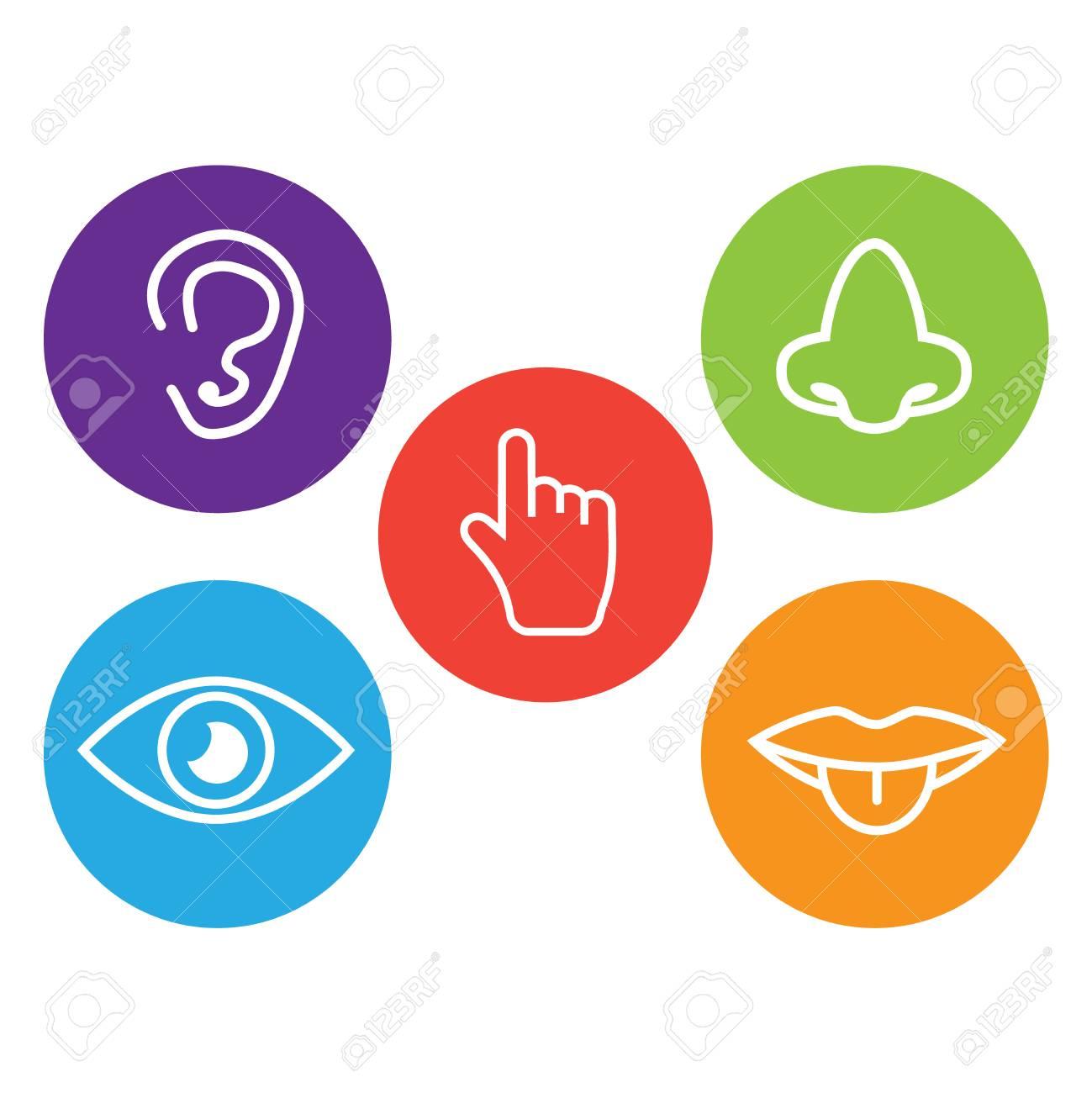 Five senses icon. Sets of icons representing the five senses - 102880951
