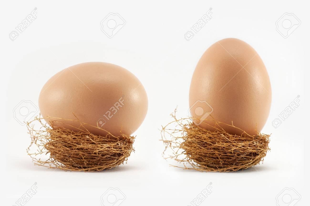 Egg in nest on white - 17105294