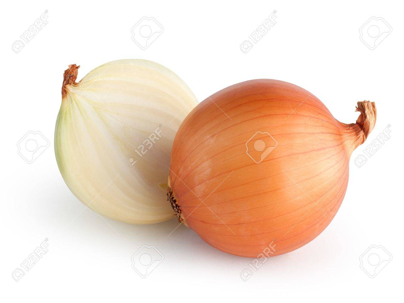 Onions isolated with clipping path - 20295244