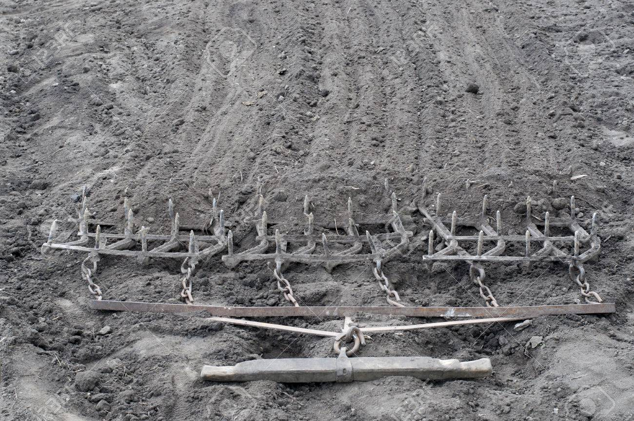 Harrow. Ancient iron plow on the earth. Old garden tools - 39644481