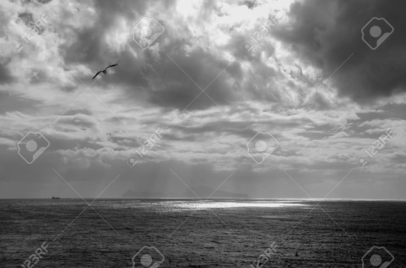 Overcast sky over the sea black and white photography dark