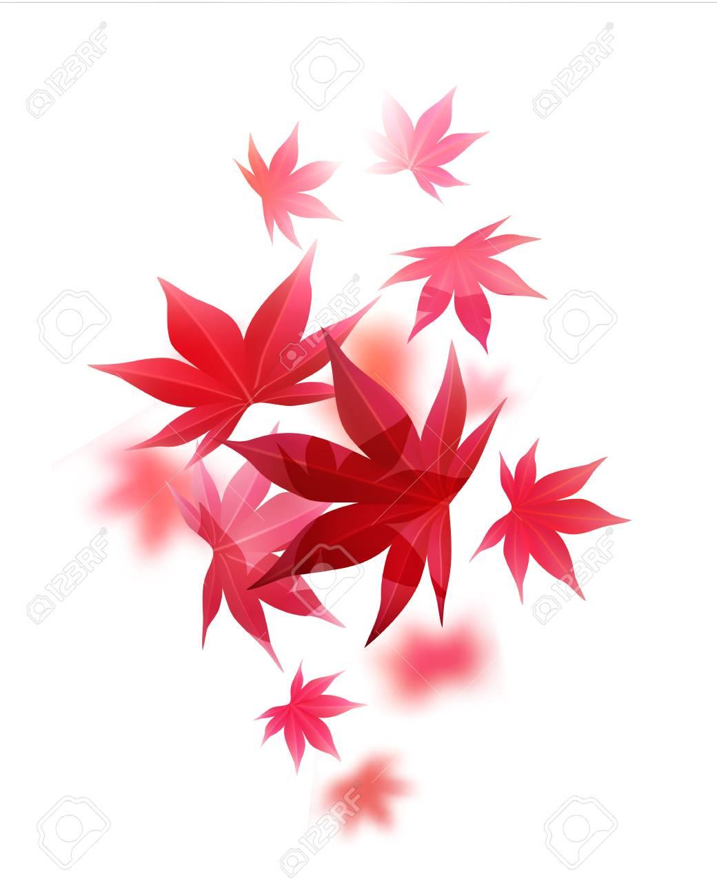 白のベクター イラストをリアルな秋もみじのイラスト素材ベクタ