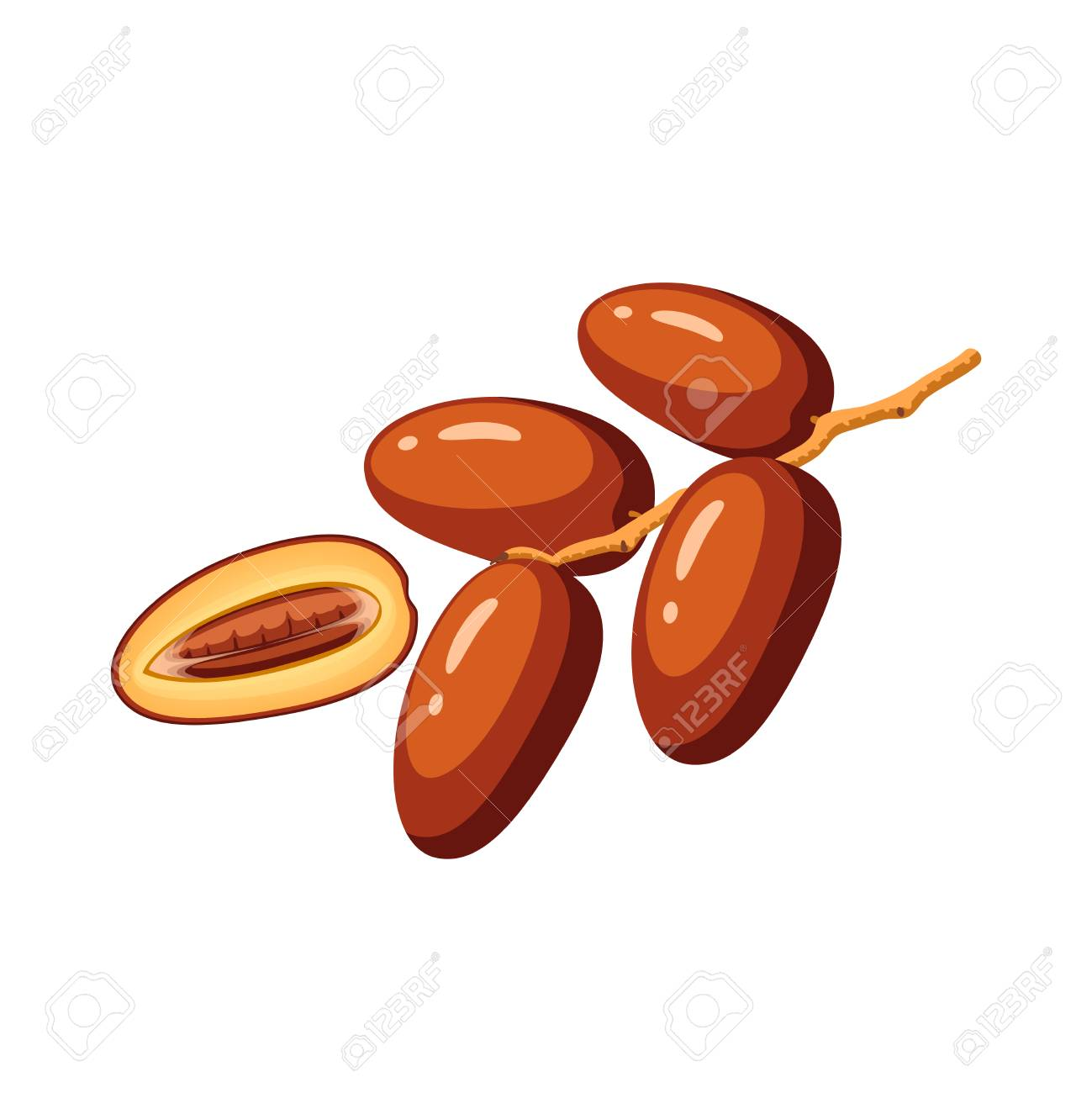 Summer tropical fruits for healthy lifestyle. Branch of dates. Vector illustration cartoon flat icon isolated on white. - 94813364