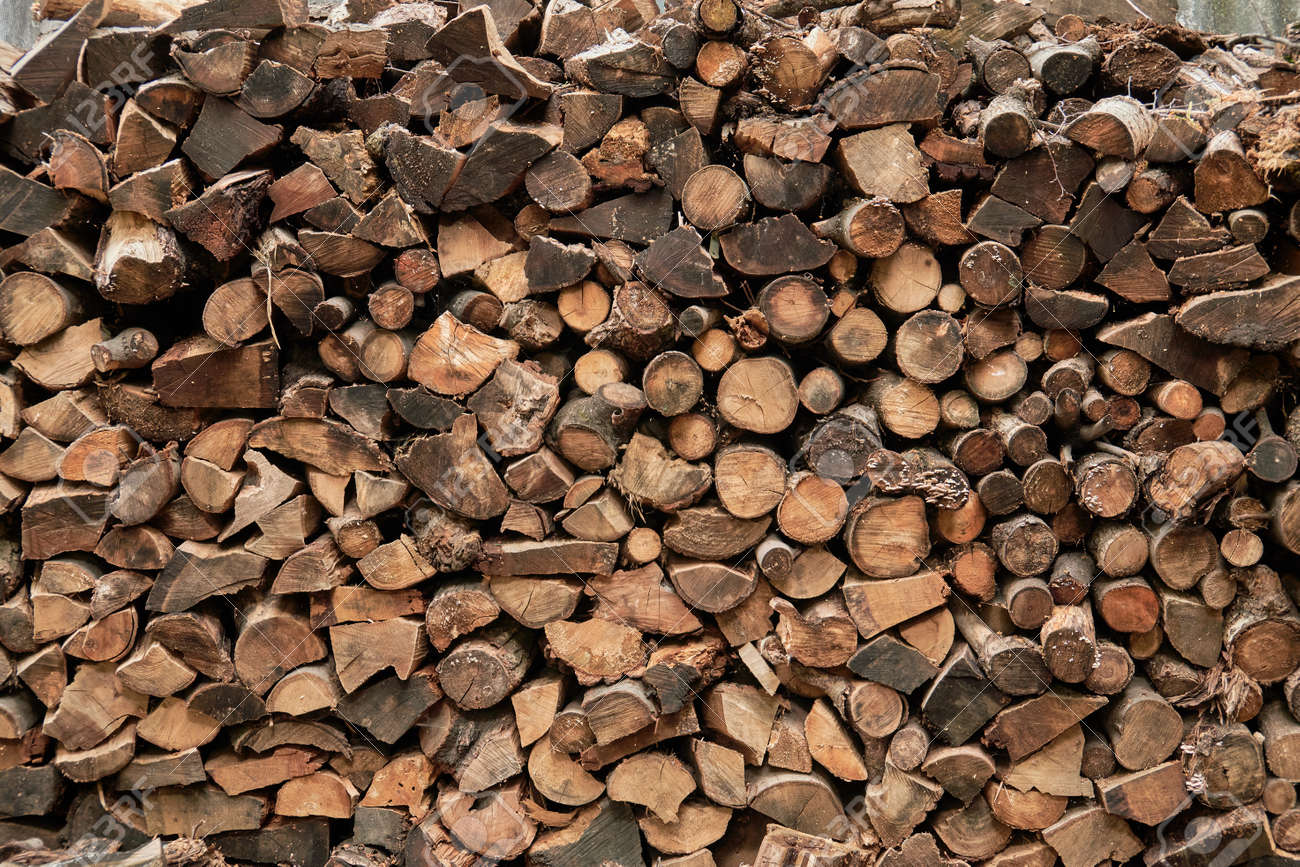 large pile of firewood near wooden house in avillage on outskirts of forest. rural abandoned building in forest. ecological fuel, lack of civilization, unity with nature, village life, poverty concept - 165197440