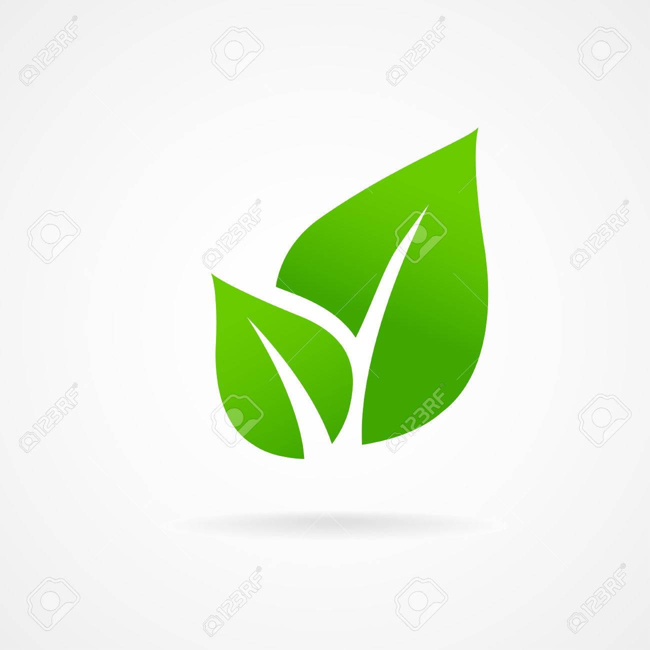 Eco icon green leaf vector illustration isolated - 25314565