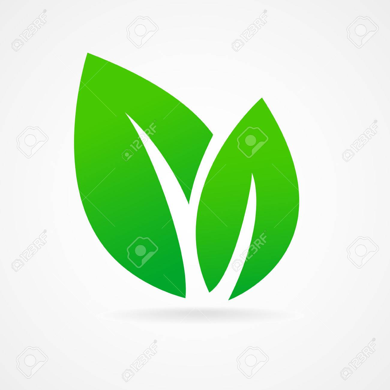 eco icon green leaf vector illustration isolated royalty free rh 123rf com leaf vector background leaf vector free download
