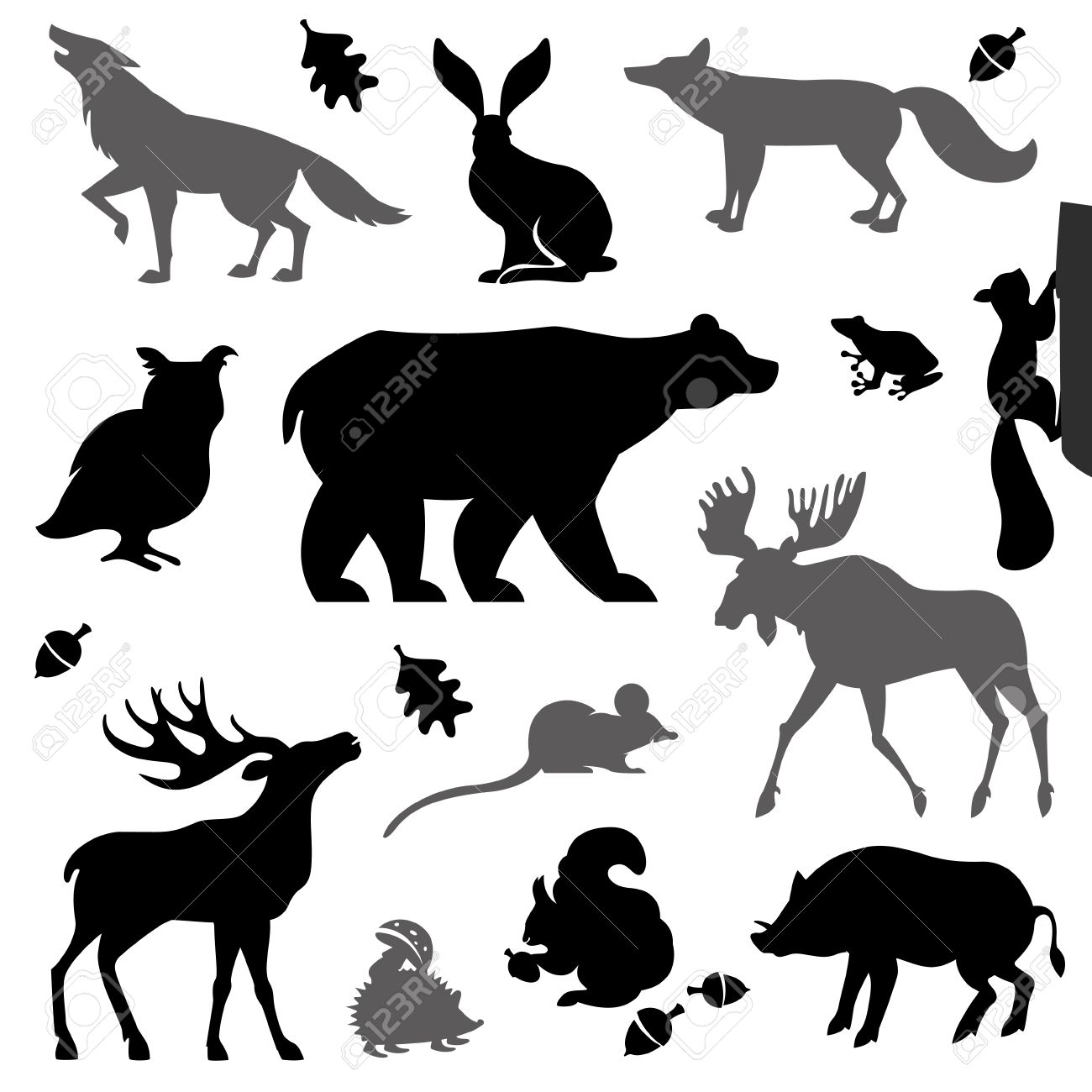 Animals living in european forest. Vector icon set of silhouette. - 45322880