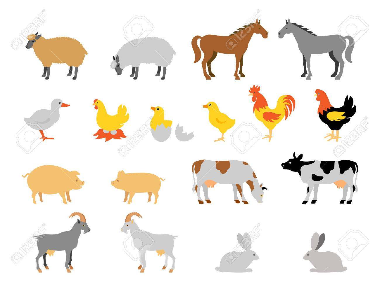 Farm animal collection set. Flat style character. Vector illustration. - 51914682