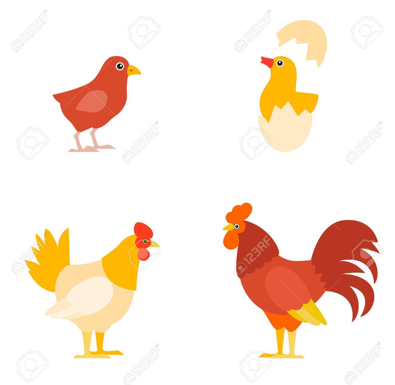 カラフルな農場の鳥のコレクション鶏鶏ひよこと卵のベクトル