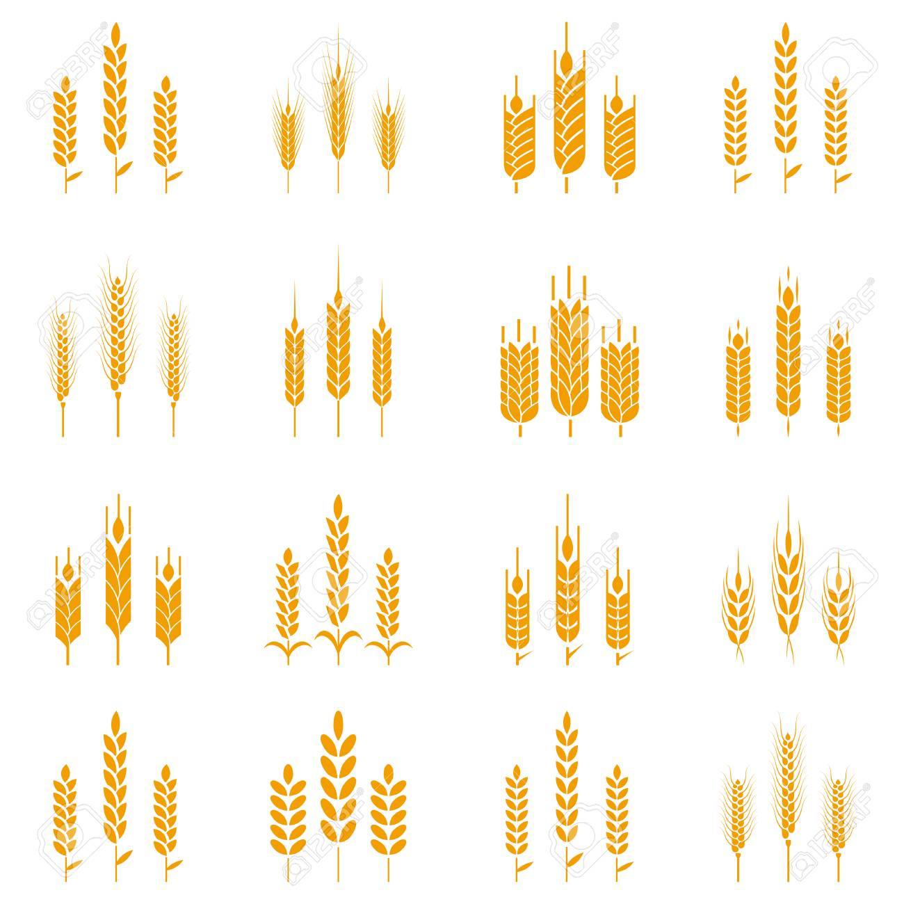 Wheat Ear Symbols For Logo Design Concept For Organic Products