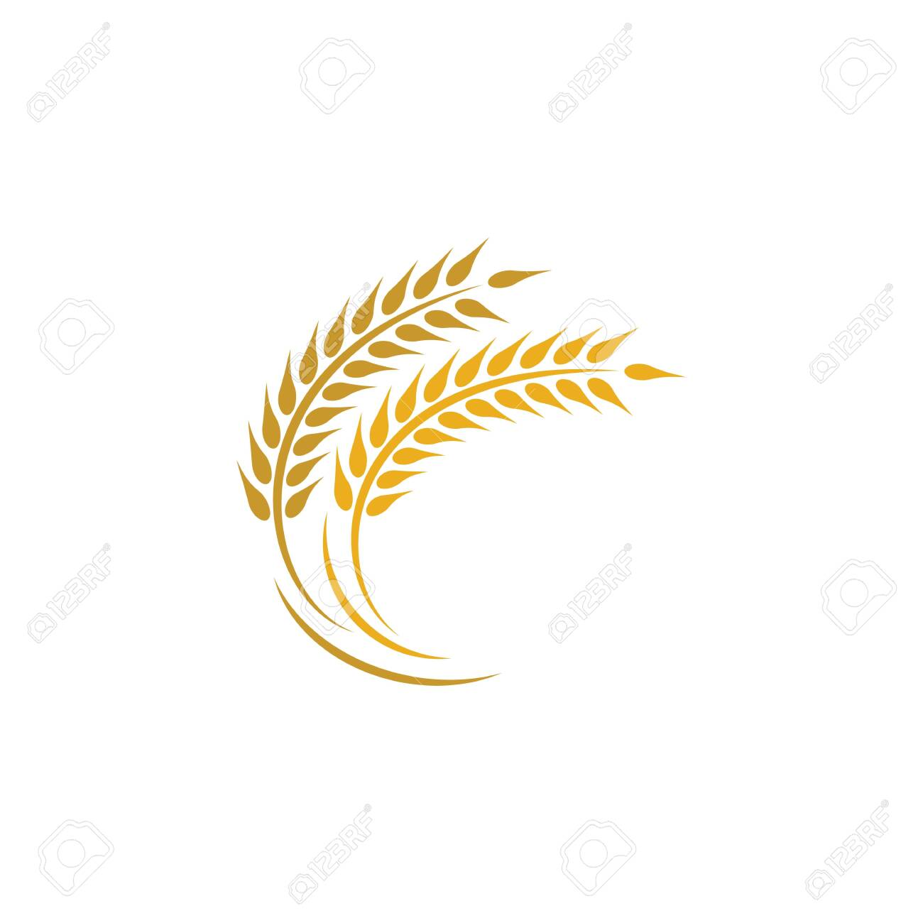 Agriculture wheat logo template vector icon design - 153838833