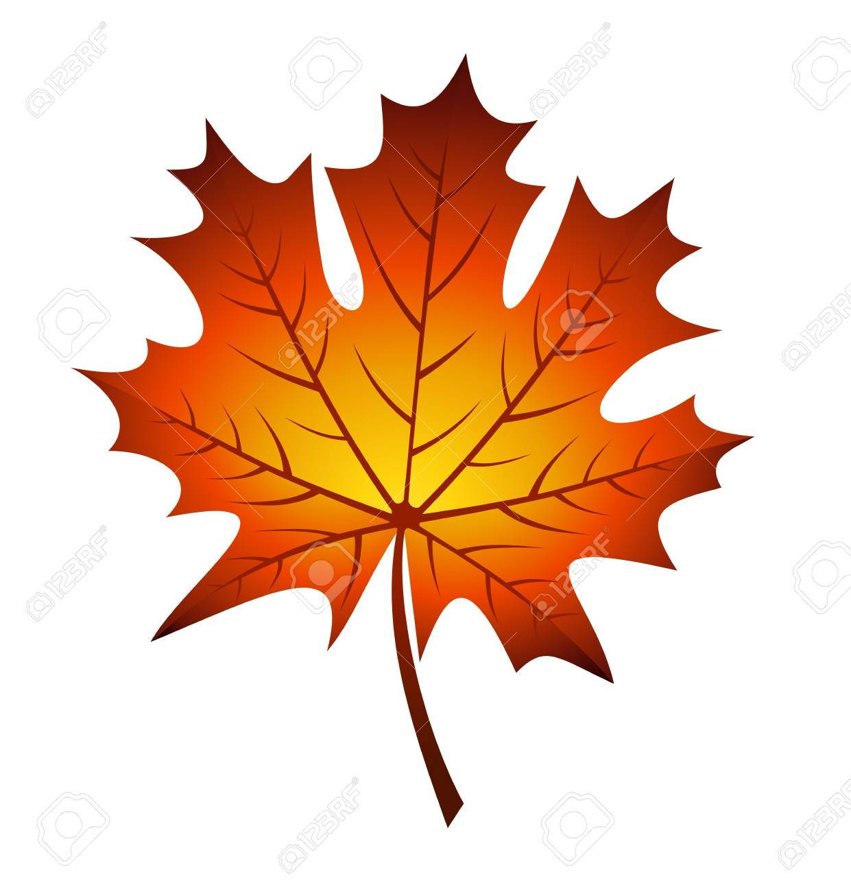 Vector illustration of autumn maple leaf Stock Vector - 18259375
