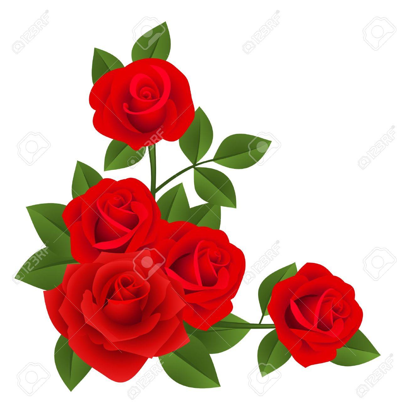 Las Rosas Rojas Vector Ilustracion Ilustraciones Vectoriales Clip