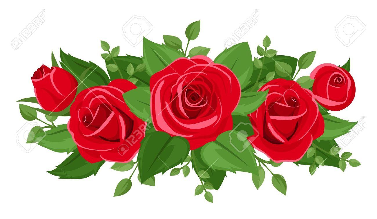 Rosas Rojas Capullos Y Hojas Vector Ilustracion Ilustraciones