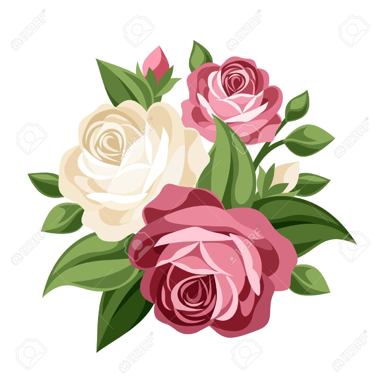 pink and white vintage roses vector illustration royalty free rh 123rf com roses vectoriel rose vectoriel gratuit
